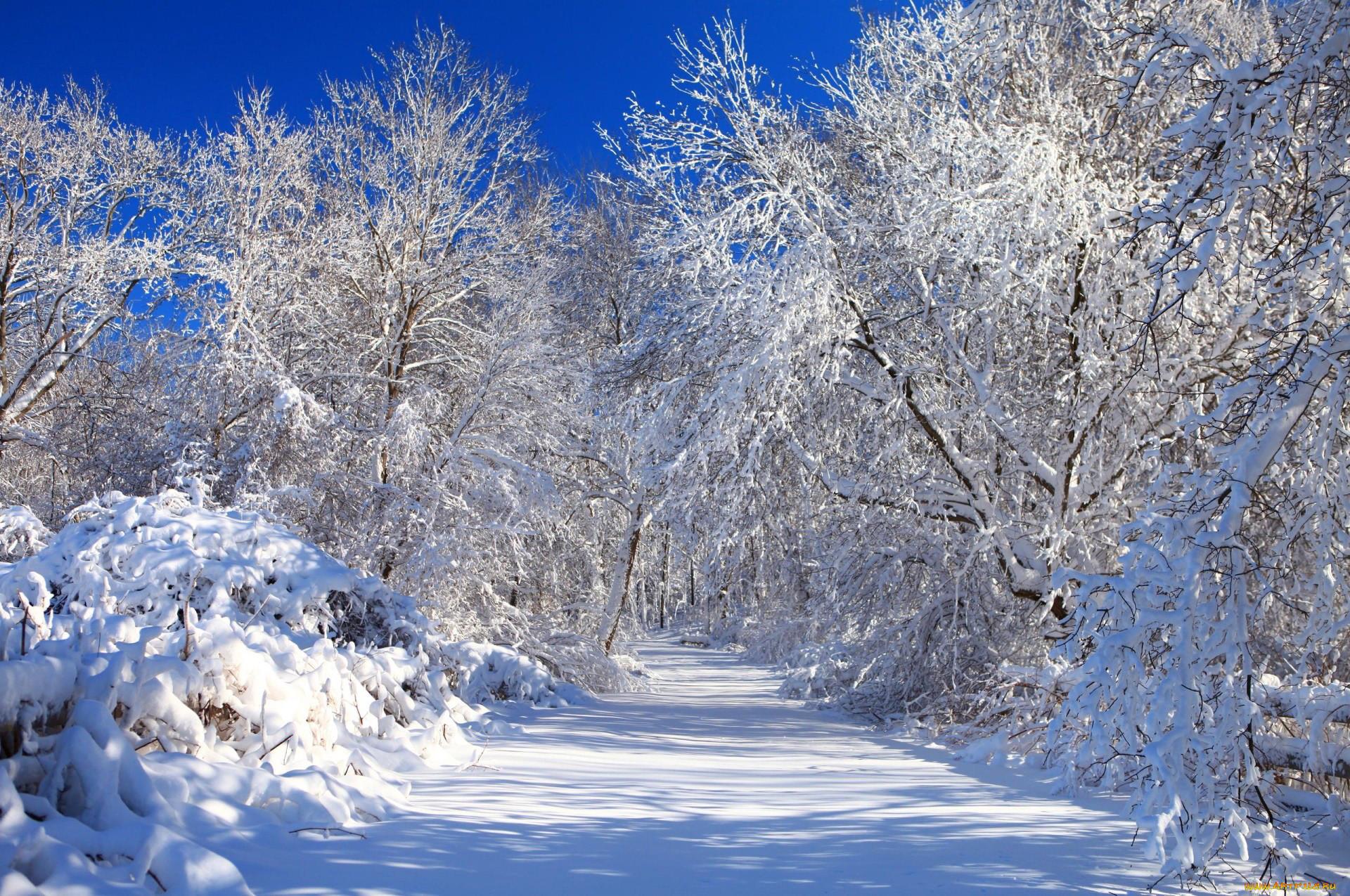смотреть картинки зимы на рабочий стол нашла очень